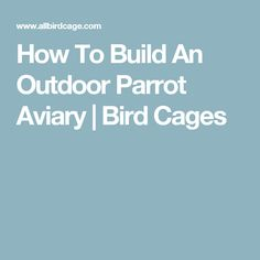 How To Build An Outdoor Parrot Aviary | Bird Cages