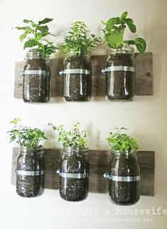 DIY Mason Jar Herb Planter -from Not Just a Housewife