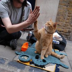 James Bowen & Street Cat Bob in London - can't wait to watch the film!!!