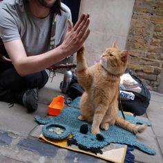 James Bowen & Street Cat Bob in London