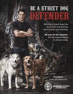 Sons of Anarchy Star Theo Rossi Launches Campaign to Protect Street Dogs #streetdogdefender