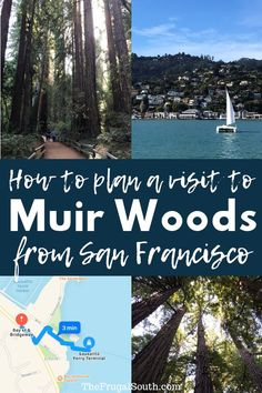 How to plan a DIY trip to Muir Woods from San Francisco! How to catch the ferry … How to plan a DIY trip to Muir Woods from San Francisco! How to catch the ferry to Sausalito and the Muir… Continue Reading → San Francisco Vacation, San Francisco Travel, San Francisco With Kids, San Francisco Tours, San Francisco Ferry, Cheap Places To Travel, Cool Places To Visit, Sausalito California, Voyager Seul