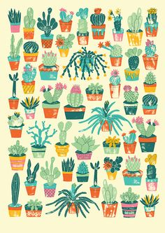Potted Cacti - harrydrawspictures