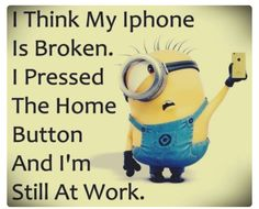 New Funny Minions Pictures :) Broken Screen Miami. Llama 305 web http:/. - New Funny Minions Pictures :] Broken Screen Miami. Llama 305 web http:// www. Image Minions, Minions Images, Funny Minion Pictures, Minions Pics, Minion Stuff, Funny Images, Funny Photos, Jokes Images, Hilarious Pictures