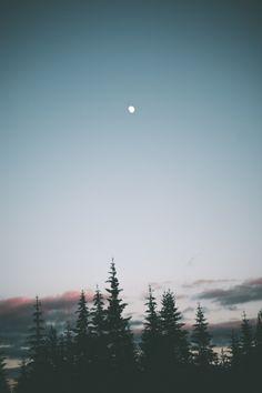 hannahkemp:  Summer Nights//Washington July...