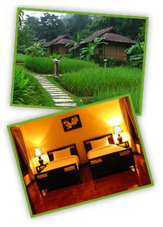Fern Resort - EcoTourism Resort for Nature Lovers Fern Resort, Hotels And Resorts, Lodges, Thailand, Places, Nature, Travel, Cottages, Lugares