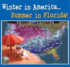 It's always summer in Florida!