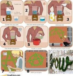 """Green Graffiti...homemade moss mixture...""""paint"""" this moss mixture and watch it grow. Excited to give this a try on our septic tank cover."""