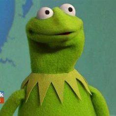 kermit the frog memes lmfao , Pranks Kermit Face, Kermit The Frog Meme, Funny Kermit Memes, Cartoon Memes, Cute Memes, Stupid Funny Memes, Pranks Hilarious, Lmfao Funny, Funny Quotes