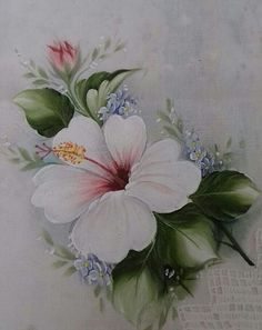 Risco de Hibisco | meusite-1 China Painting, Tole Painting, Fabric Painting, Pinterest Pinturas, Watercolor Flowers, Watercolor Paintings, Fabric Paint Designs, One Stroke Painting, Painting Patterns