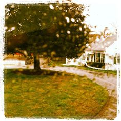 Rainy Spring.