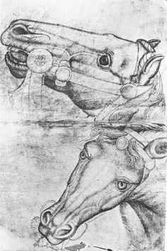 Name: Study of Horse Heads Artist: Pisanello Date: 1433 Style: Early Renaissance