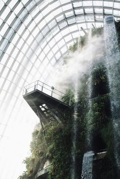 Gardens by the Bay, Singapore From Cereal Volume 6, Photo by Robbie Lawrence