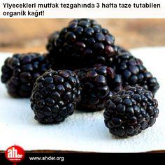 Yiyecekleri mutfak tezgahında 3 hafta taze tutabilen organik kağıt:  http://www.ahder.org/yiyecekleri-mutfak-tezgahinda-3-hafta-taze-tutabilen-organik-kagit