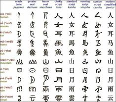 Chinese 中文 So beautiful, I love the evolution of the characters. I suck, not studying it much anymore. but maybe someday! Chinese Writing, Chinese Words, Chinese Symbols, Speak Chinese, Chinese Quotes, Chinese Art, Chinese Alphabet, Mandarin Language, Ancient Scripts