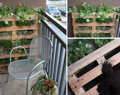 Learn how to turn a reclaimed pallet into a hanging garden. One of Hana & Posy's own is having a lot of success with this! www.hanaposy.com