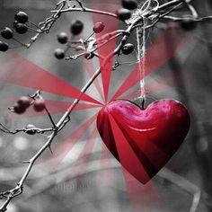 Достойният Бележки за изображения: Любовта 10