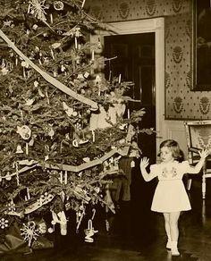 Caroline Kennedy enjoying the family Christmas tree