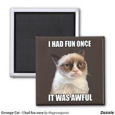 Grumpy Cat - I had fun once Magnet