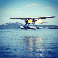 Float plane Landing in Roche Harbor, Washington