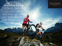 Single Track Bike Tour from Cape Town in South Africa Africa Mountain Biking, Hardtail Mountain Bike, Mtb, Montain Bike, Full Suspension Mountain Bike, Bike Equipment, Buy Bike, Adventure Activities, Veils