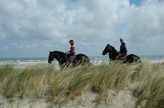 Paardrijden op Terschelling | Puur Terschelling