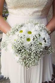 bouquet margaridas - Pesquisa Google