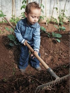 5 Gardening activities for youngsters. May 2012
