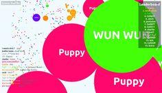 509337 score game screenshot in user Puppy agario game score screenshot - Puppy saved mass