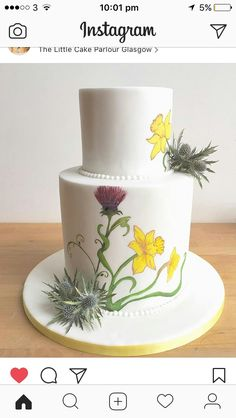 Kiwi Cake, Little Cakes, Parlour, Desserts, Food, Tailgate Desserts, Deserts, Drawing Room, Essen