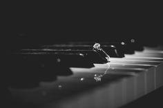 Wedding ring on piano keys.  www.jmgantphotography.com Wedding Photography Styles, Love Photography, Denver Wedding Photographer, Destination Wedding Photographer, Photojournalism, Taking Pictures, Dream Wedding, Wedding Inspiration, Wedding Rings