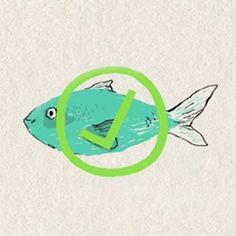 Gemeinsam stoppen wir die Überfischung der europäischen Meere. Rüttel die EU-Politiker wach - für neue Fischereigesetze. Jetzt Petition unterschreiben! www.schwarm.wwf.de