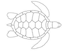 107 Best Coloring pages: Sea turtle pattern coloring pages to print Turtle Coloring Pages, Pattern Coloring Pages, Animal Coloring Pages, Coloring Pages To Print, Free Printable Coloring Pages, Coloring Pages For Kids, Coloring Sheets, Turtle Outline, Terrarium Reptile