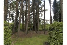 Detached - For Sale - Naas, Kildare