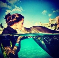 Swim with #dolphins. #Cancun