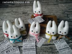 The Giving Bunny Project