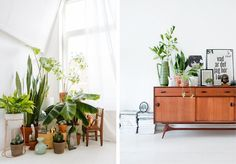 12 Inspiring Spaces for Your Green Thumb   Everyday with Sarah