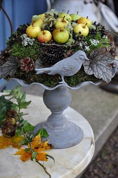 bird or nature themed centerpieces... use edible fruit and make it functional as well as beautiful!