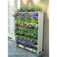 Shop for New Age Garden ecoFLEX Living Wall Vertical Gardens. Get free delivery at Overstock.com - Your Online Garden