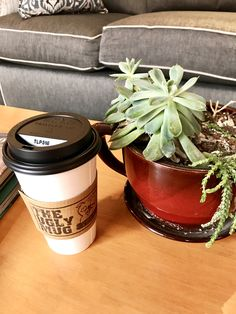 Coffee and a succulent.