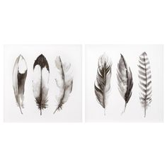Set of 2 Canvas - Feathers Furniture Decor, Modern Furniture, Feather Wall Decor, Bouclair, Stylish Home Decor, Bed & Bath, Home Staging, Window Coverings, Decoration