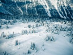 Tracked Powder Photo by Neil Krauss -- National Geographic Your Shot