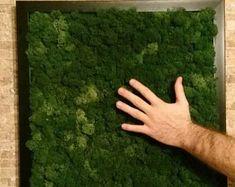 Wall decoration wall art wall gardenpreserved moss | Etsy Moss Art, Wall Boxes, Plant Art, Green Art, Wall Decor, Wall Art, Indoor Plants, Color Mixing, Decoration