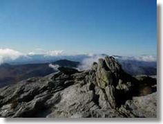 Bring your hiking boots and climb to the top of some of Vermont's most scenic mountaintops!  Camel's Hump