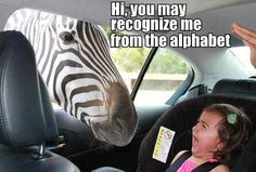 "Funny picture of a zebra sticking his head in the car and a kid screaming! ""Hi, you may recognize me from the alphabet!"""