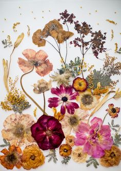 Pin on diys and crafts Art Floral, Paper Picture Frames, Hanging Flower Wall, Pressed Flower Art, Flower Crafts, Diy Flower, Flower Petals, Resin Art, Dried Flowers