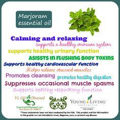 marjoram properties Buy Essential Oils at www.youngliving.com Sponsor/Enroller ID#2103879