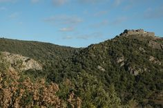 Vue du château depuis l'Ouest, sur un chemin forestier emprunté en VTT.