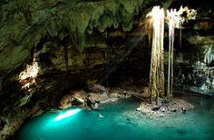 Mundos subterráneos en #QuintanaRoo. Los #Cenotes y las cavernas son parte del paisaje de estas tierras, llenas de historias y de vida.