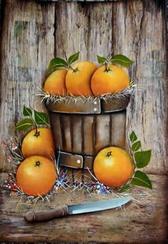We are all about Citrus, and because of that we love finding beautiful citrus art! Poinsettia Groves has been send Florida's sweetest Oranges and Grapefruit since www.poinsettiagro… Picture courtesy of Luiz Poletti Fruit Painting, Tole Painting, Fabric Painting, Painting On Wood, Decoupage Vintage, Decoupage Paper, Fruit Illustration, Country Paintings, Fruit Art